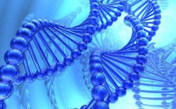 Bioinformatic tools for big data on human genome analysis