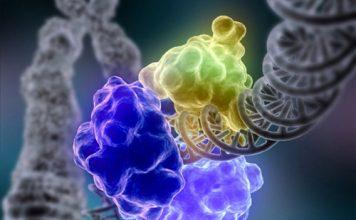 microfluidic-molecular-machines-for-dna