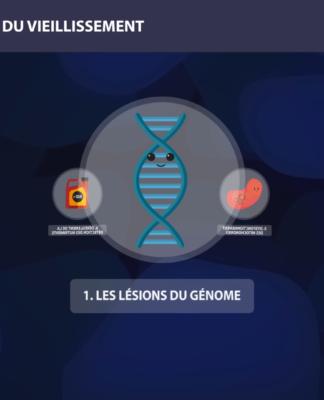 ADN 9 causes du vieillissement Long Long Life longévité transhumanisme présentation des 9 causes