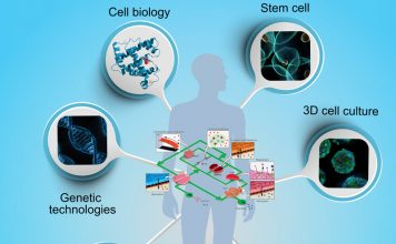 organ-on-chip-microfluidic-research-project featured image