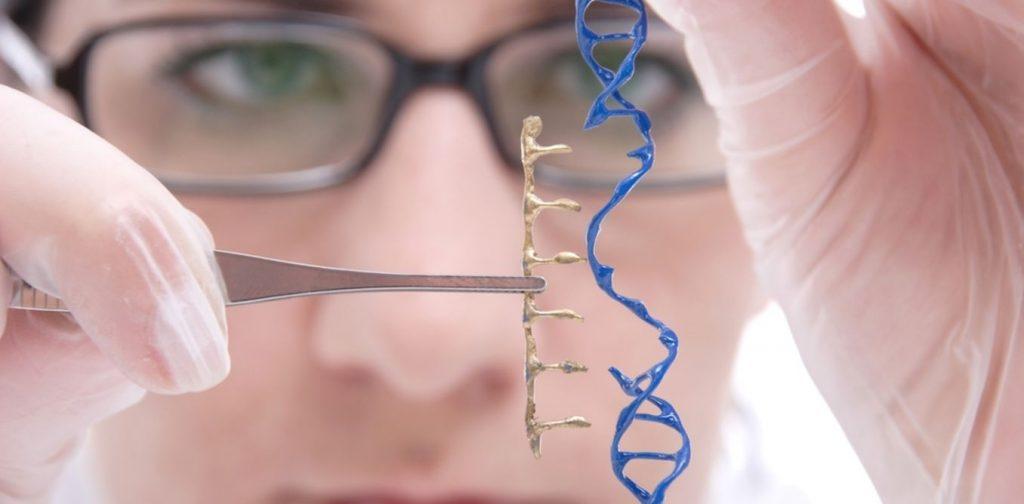 myopathie de duchenne thérapie génique anti-vieillissement