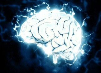 electrified-brain