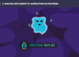 protéine long long life 9 causes du vieillissement longévité transhumanisme
