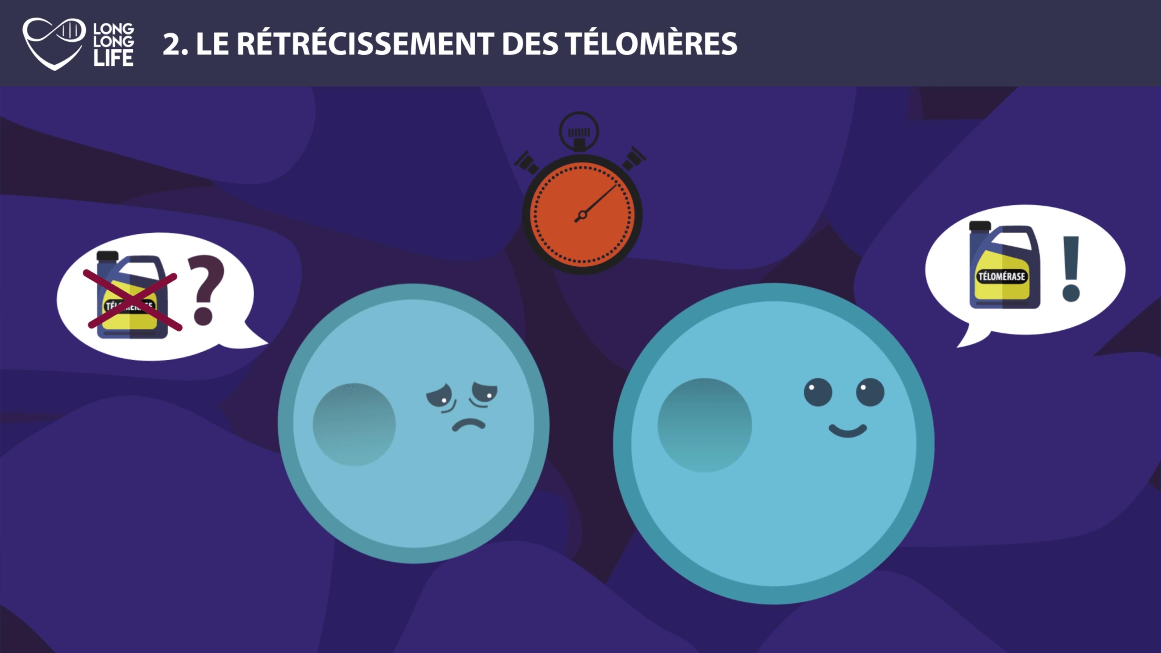 Télomérase 2 - Long Long Life 9 causes du vieillissement longévité transhumanisme